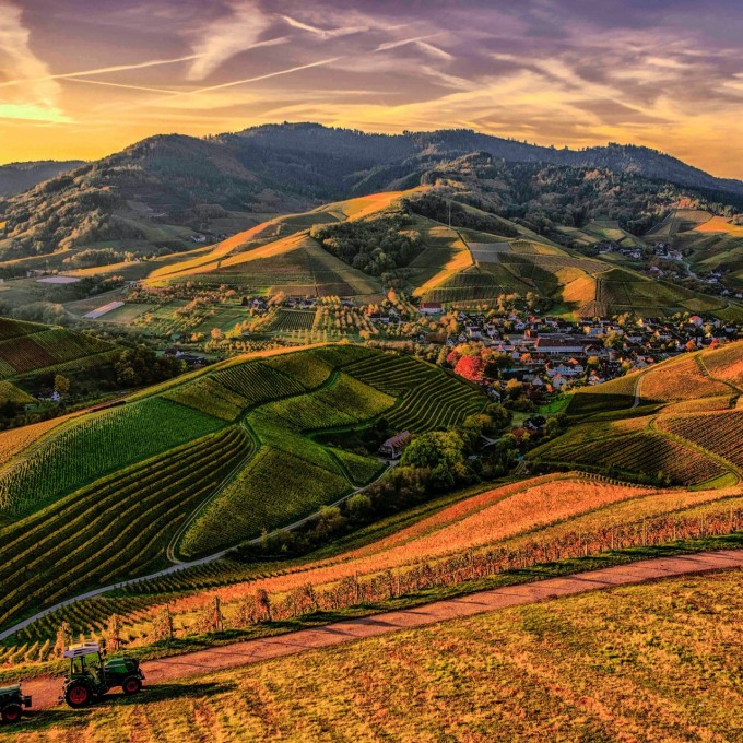 Sustainable, organic, biodynamic and vegan winemaking