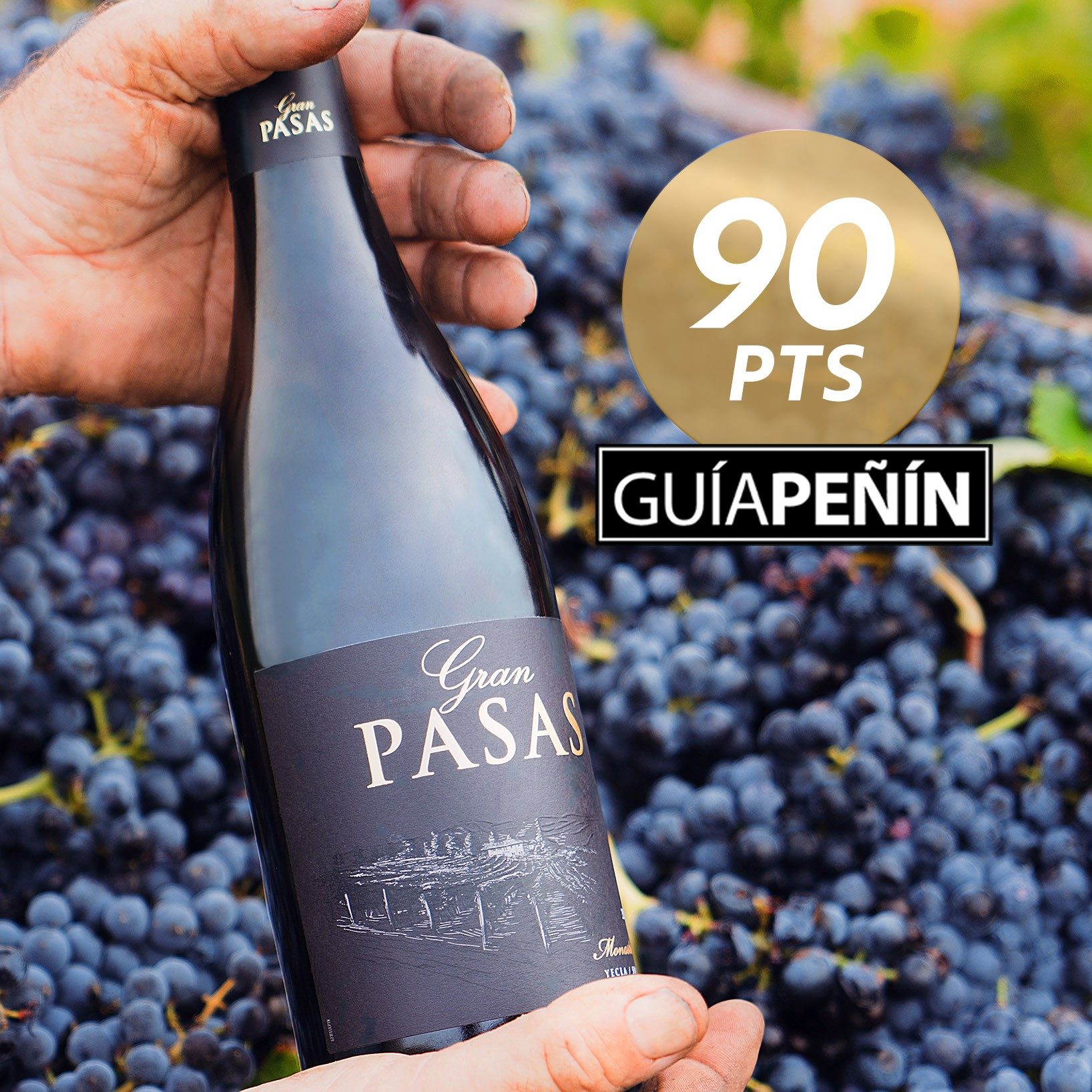 Gran Pasas gets 90 Peñín points